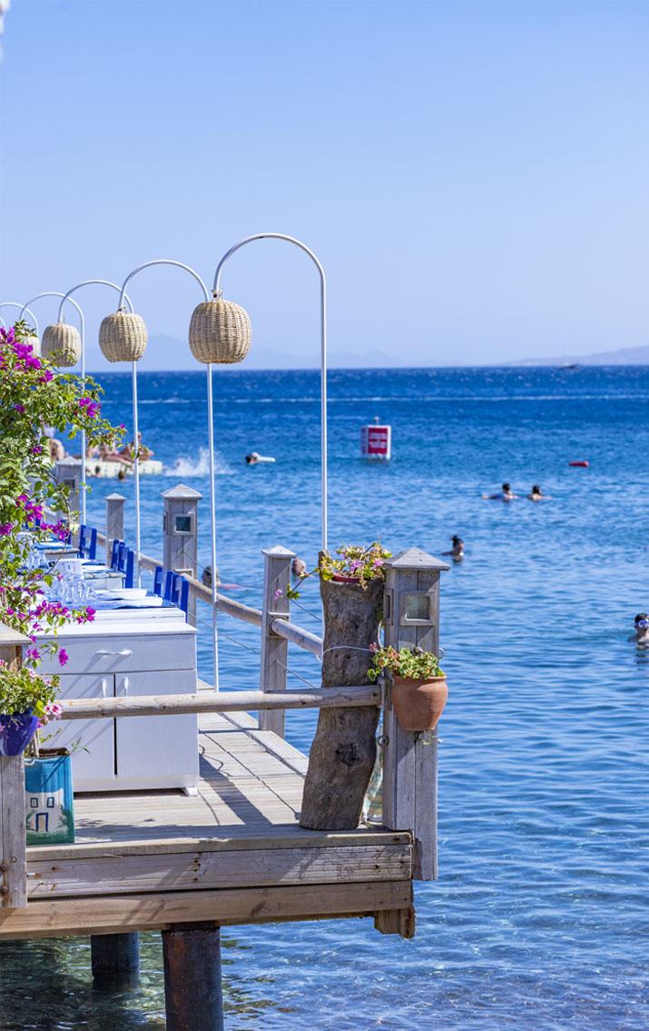 anasayfa-plaj